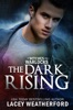 Of Witches and Warlocks: The Dark Rising