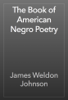 James Weldon Johnson - The Book of American Negro Poetry  artwork