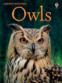 Owls: For tablet devices