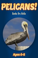 Facts About Pelicans For Kids 6-8