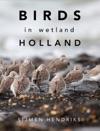 Birds In Wetland Holland