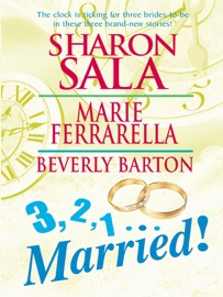 3, 2, 1…Married! PDF Download