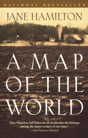 A Map of the World book