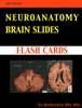 Neuroanatomy BRAIN SLIDES