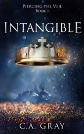 Intangible (Piercing the Veil, Book 1) - C.A. Gray book summary