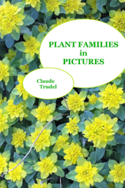 Plant Families in Pictures book