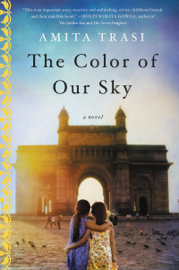 The Color of Our Sky - Amita Trasi book summary
