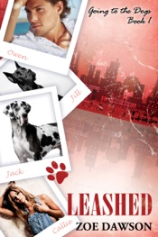 Download Leashed