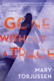 Gone Without a Trace PDF Download