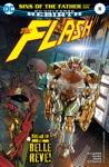 The Flash 2016- 18