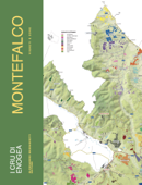 Montefalco: Vigneti e Zone Book Cover