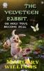The Velveteen Rabbit. Illustrated Edition