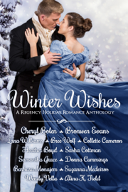 Winter Wishes book