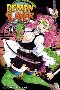 Demon Slayer: Kimetsu no Yaiba, Vol. 14 Book Cover