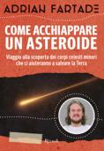 Come acchiappare un asteroide