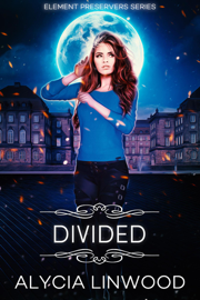 Divided book