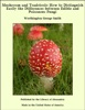 Mushroom And Toadstools: How To Distinguish Easily The Differences Between Edible And Poisonous Fungi