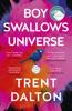 Trent Dalton - Boy Swallows Universe artwork
