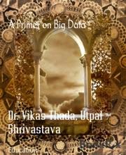 A Primer On Big Data