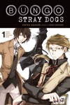 Bungo Stray Dogs Vol 1 Light Novel
