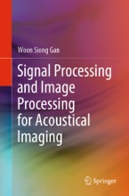 Signal Processing And Image Processing For Acoustical Imaging