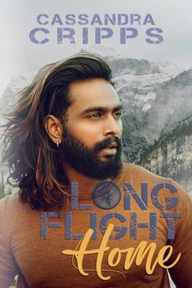 Long Flight Home image
