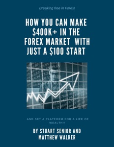 Breaking Free in Forex: How you can Make 400k+in the Forex Market with just $100 Start and Set a Platform for a Life of Wealth!