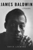 David Leeming - James Baldwin  artwork