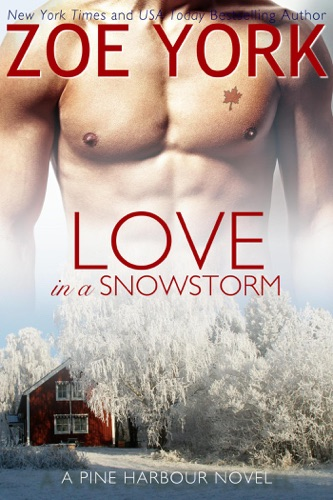 Love in a Snowstorm E-Book Download