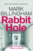 Download and Read Online Rabbit Hole