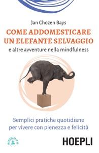 Come addestrare un elefante selvaggio e altre avventure nella mindfulness Book Cover