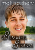 Summer Storm (The Elliott Chronicles, #2)