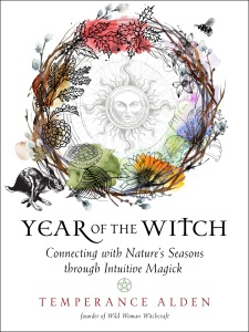 Year of the Witch Book Cover