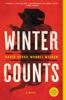David Heska Wanbli Weiden - Winter Counts artwork