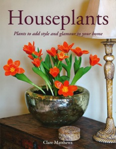 Houseplants Book Cover