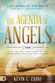 The Agenda of Angels book