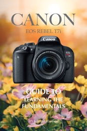 Canon EOS Rebel T7i: Guide to Learning the Fundamentals
