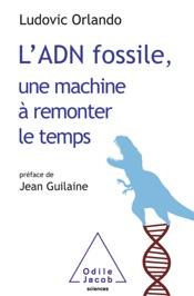 L'ADN fossile, une machine à remonter le temps
