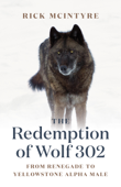 The Redemption of Wolf 302 Book Cover