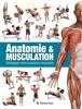 Anatomie & Musculation