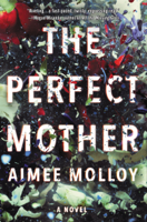 The Perfect Mother ebook Download