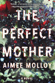 The Perfect Mother PDF Download