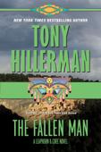 The Fallen Man Book Cover