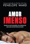 Amor Imenso Book Cover