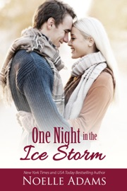 One Night in the Ice Storm PDF Download