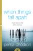 Pema Chödrön - When Things Fall Apart artwork