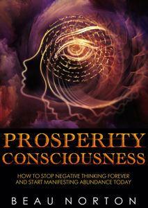 Prosperity Consciousness: How to Stop Negative Thinking Forever and Start Manifesting Abundance Today Book Review