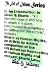An Introduction To Islam  Sharia Kill Him Who Does It And Him To Whom It Is Done Circumcision Is Obligatory By Cutting Out The Clitoris Sharia Vs Human Rights An Article By Article Comparison