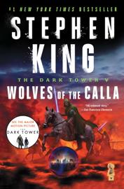 The Dark Tower V book