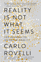 Carlo Rovelli, Simon Carnell & Erica Segre - Reality Is Not What It Seems artwork